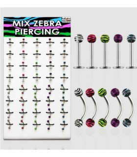 Exhibitor Zebra eyebrow labret - MIX42